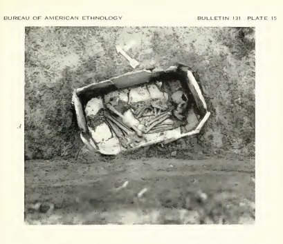 Native American Antiquity: The Death of a Cherokee