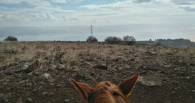 Riding at the Sea of Galilee, Israel
