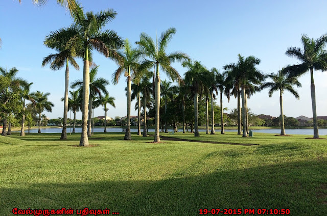 Welleby Park in Sunrise Florida