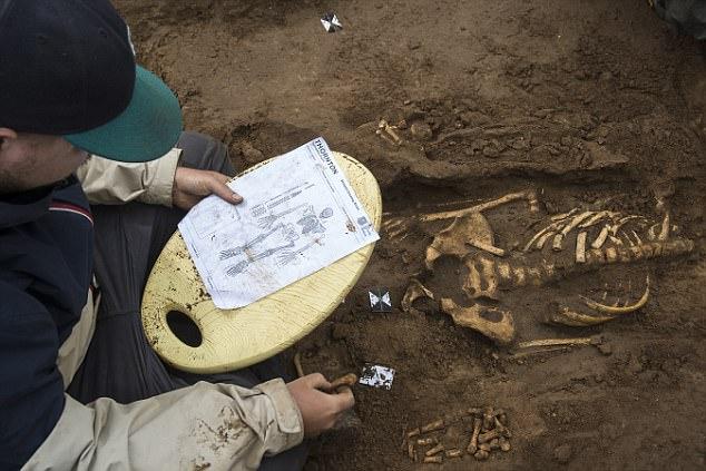 Medieval priest discovered in elaborate grave 700 years after his death