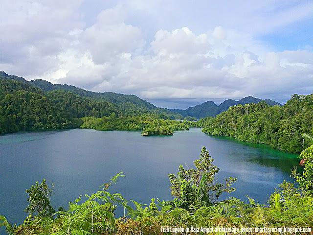 Pemandangan alam di Laguna Ikan di Raja Ampat