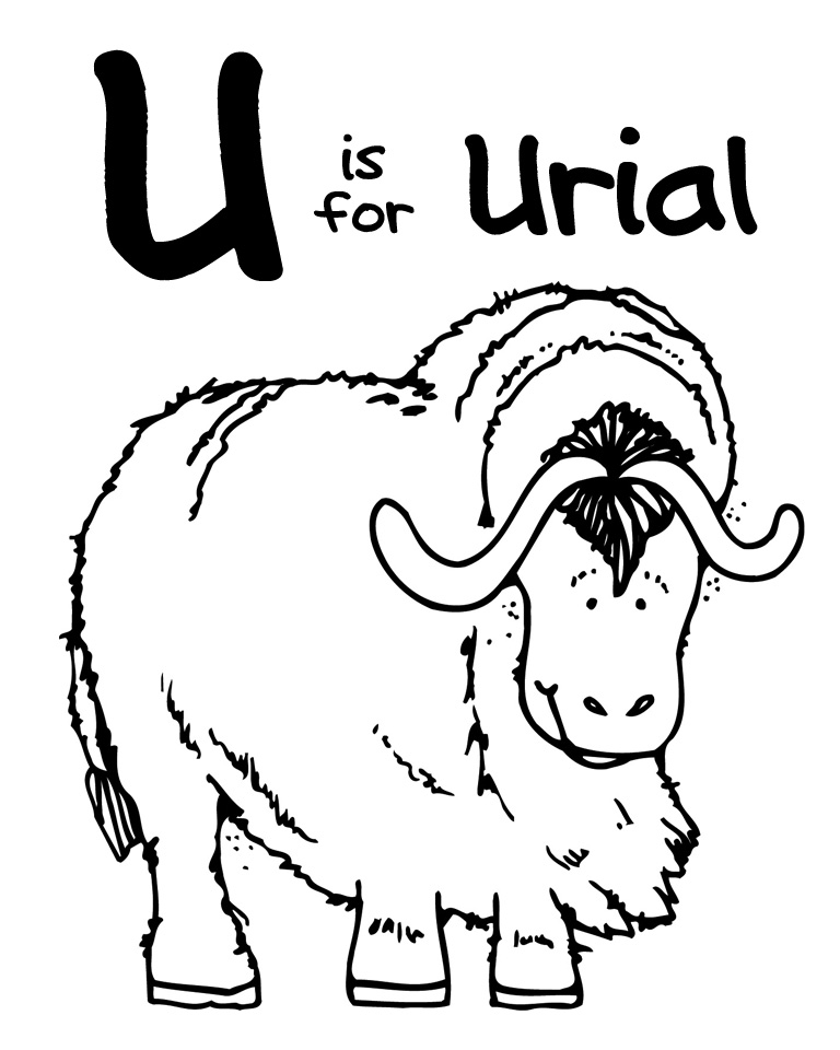 We Love Being Moms!: Letter U (Urial)
