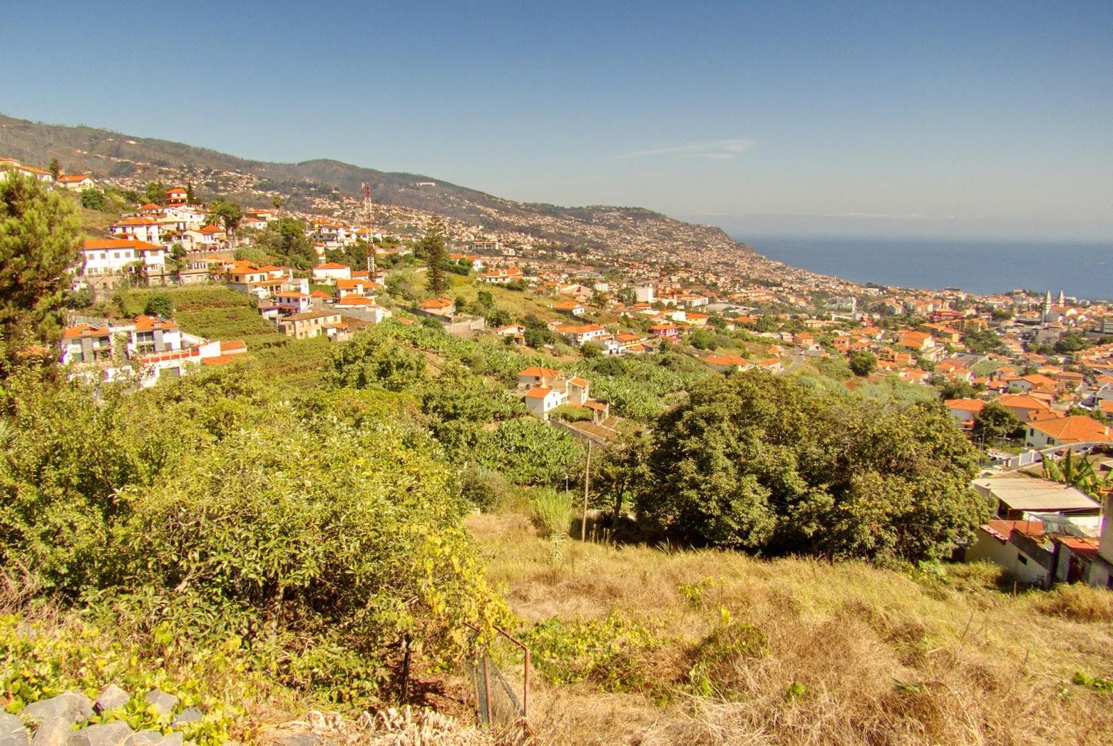 o Funchal visto de outro ângulo