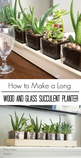 How to make a long succulent centerpiece from inexpensive glass vases.