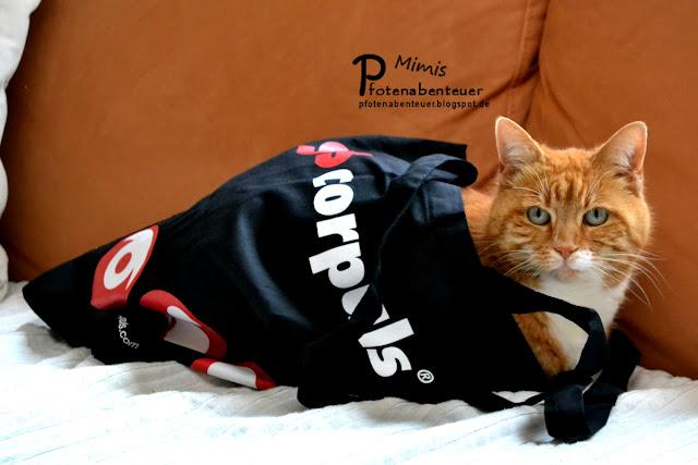Katze Mimi liegt in einer neuen corpuls Tasche