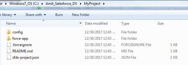 SFDX Folder Structure