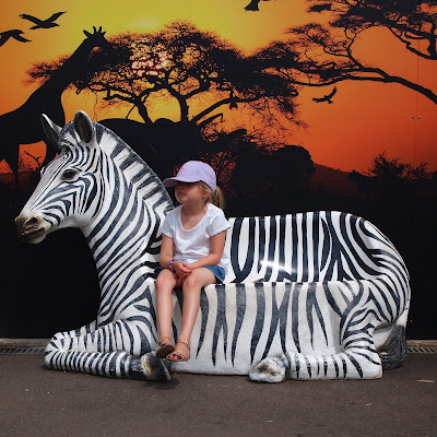 Ellie taking a break with a Zebra at Paradise Wildlife Park