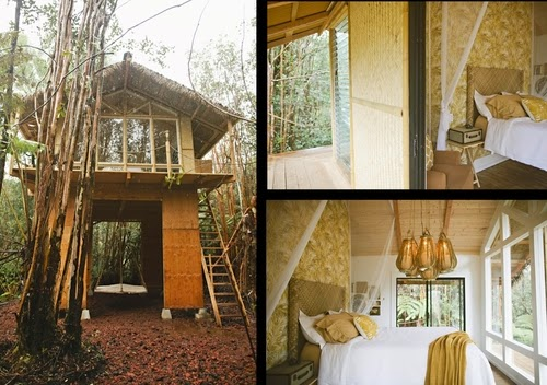 00-Kristie-Wolfe-Architecture-Tiny-Tree-House-in-Hawaii-www-designstack-co