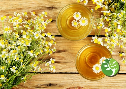 """خبيرة بريطانية:  """"شاي الفراعنة"""" يخفض ضغط الدم المرتفع"""