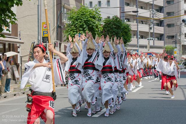 マロニエ祭りで浅草雷連の女踊りの踊り手達を撮影した写真 その4