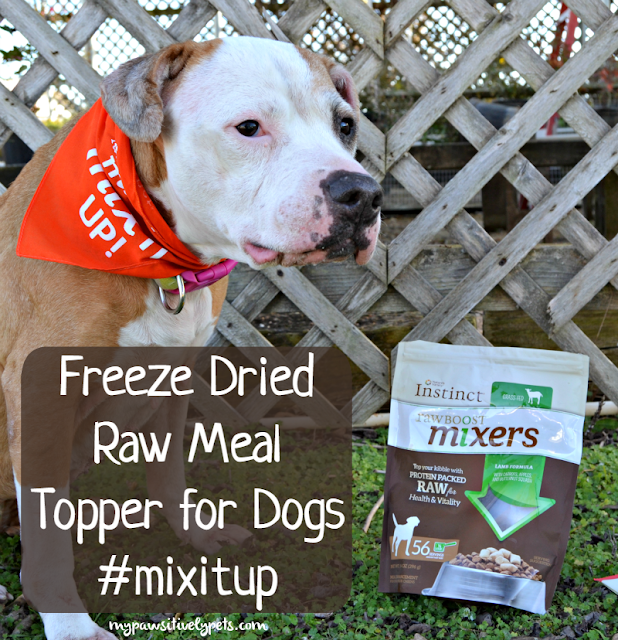 Freeze Dried Raw Meal Topper for Dogs #mixitup