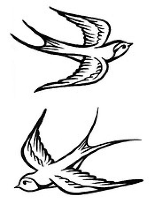 Sparrow tattoos Ideas: Pictures Of Sparrow Bird Tattoos
