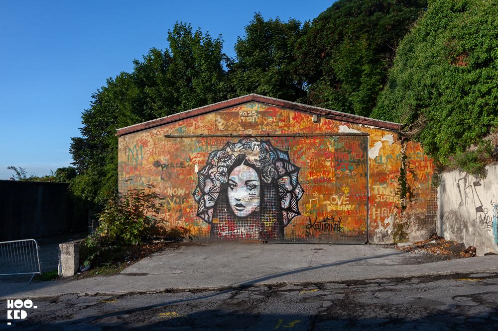 Waterford street art mural festival in Ireland