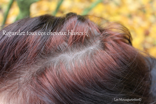 mes cheveux blancs les mousquetettes - Coloration Vegetale Cheveux Blancs