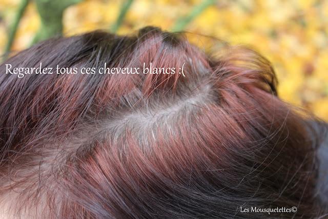 Couleur qui couvre bien les cheveux blancs