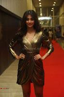 Pooja Hegde looks glamarous in deep neck sleevless short tight golden gown at Duvvada Jagannadham thank you meet function 019.JPG