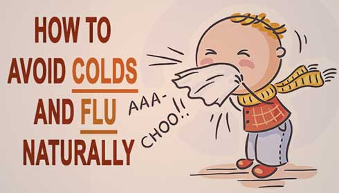 Ways to Prevent the Cold and Flu
