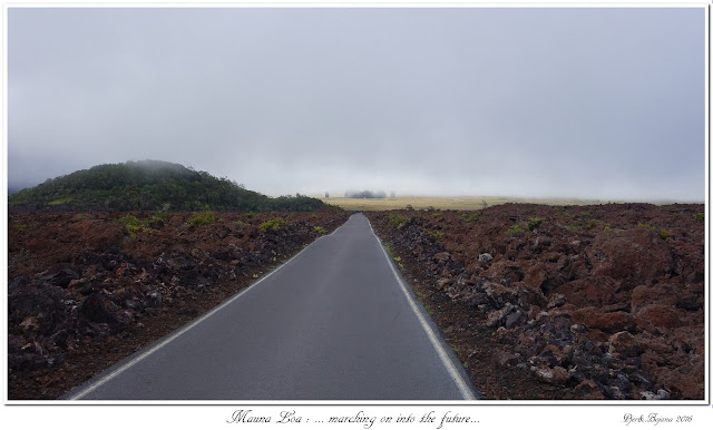 Mauna Loa: ... marching on into the future...