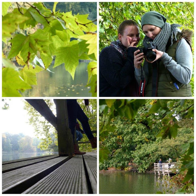 Reise Ruhrgebiet Reisebericht Besuch Fotoshooting Rombergpark Dortmund Herbst