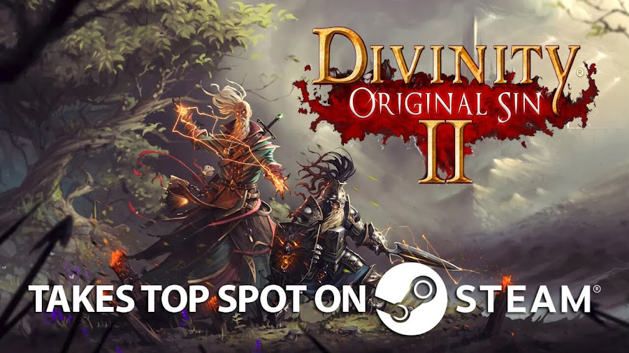 divinity original sin 2 steam