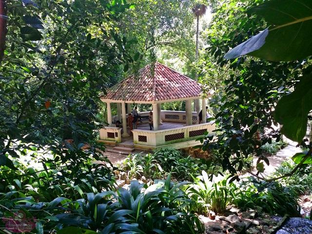 Jardim Botânico - Mirante da Imprensa