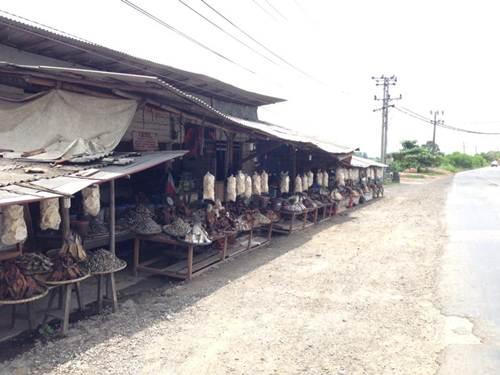 Tempat Penjual dan Pembuat Ikan Asin di Lampung