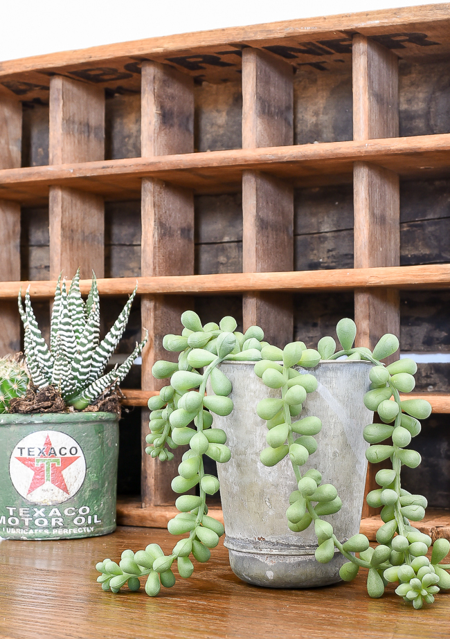 vintage stainless cup as  faux succulent planter
