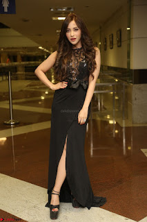 Angela Krislinzki in Transparent Black Gown at Rogue Movie Teaser Launch 1st March 2017 041.JPG