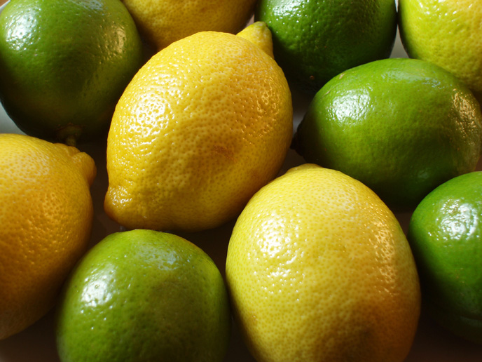 Flavors of Brazil: FRUITS OF BRAZIL - Limes and Lemons ...