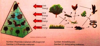 Pengertian, Interaksi dan Pola Interaksi dalam Lingkungan