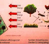 Pengertian Interaksi dan Pola Interaksi dalam Lingkungan