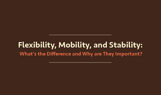 Flexibility, Mobility, and Stability: What's the Difference and Why Are They Important?