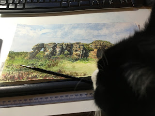Photo of a Black and White Cat looking over an in progress watercolour painting