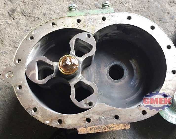 Sửa chữa máy thổi khí, bảo dưỡng máy thổi khí, sửa quạt roots blower, máy thổi khí, quạt roots blower, rotary blower,