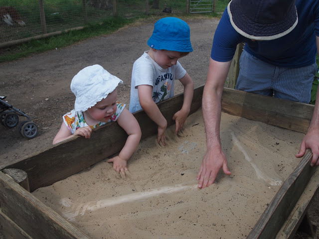 Godstone Farm, Surrey Review - Dino Trail - Digging for dinosaur bones