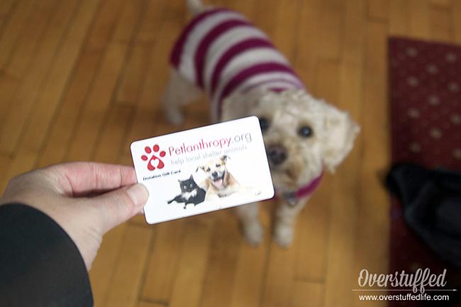 Petlanthropy Gift Card
