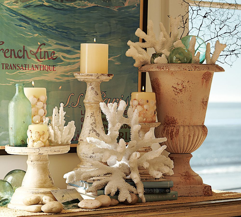 6 Ideas On How To Display Your Home Accessories: Eye For Design: Great Ways To Display Your Seashell Collection