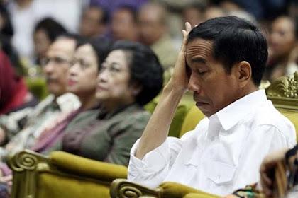 Bagi Jokowi, PDIP Sudah Tidak Penting Lagi?