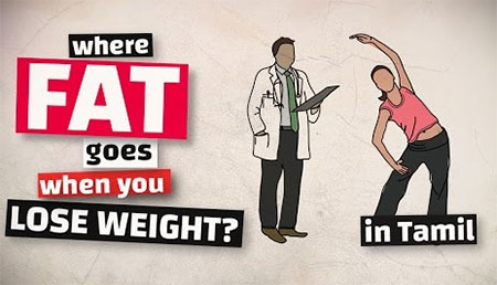 Where does the FAT go when you lose WEIGHT?