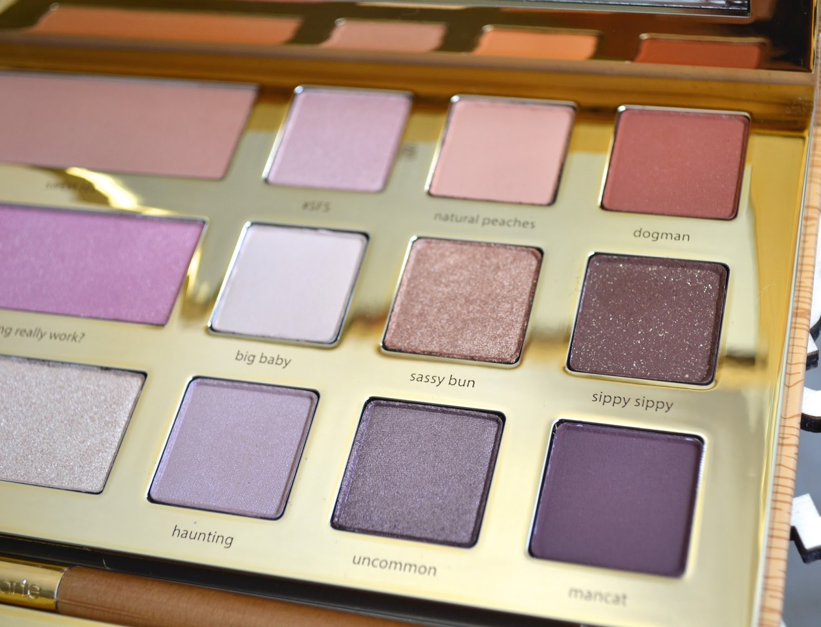 aquaheart tarte grav3yardgirl swamp queen eye cheek palette swatches and review. Black Bedroom Furniture Sets. Home Design Ideas