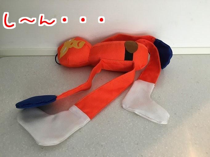 オレンジレンジャーと風太09