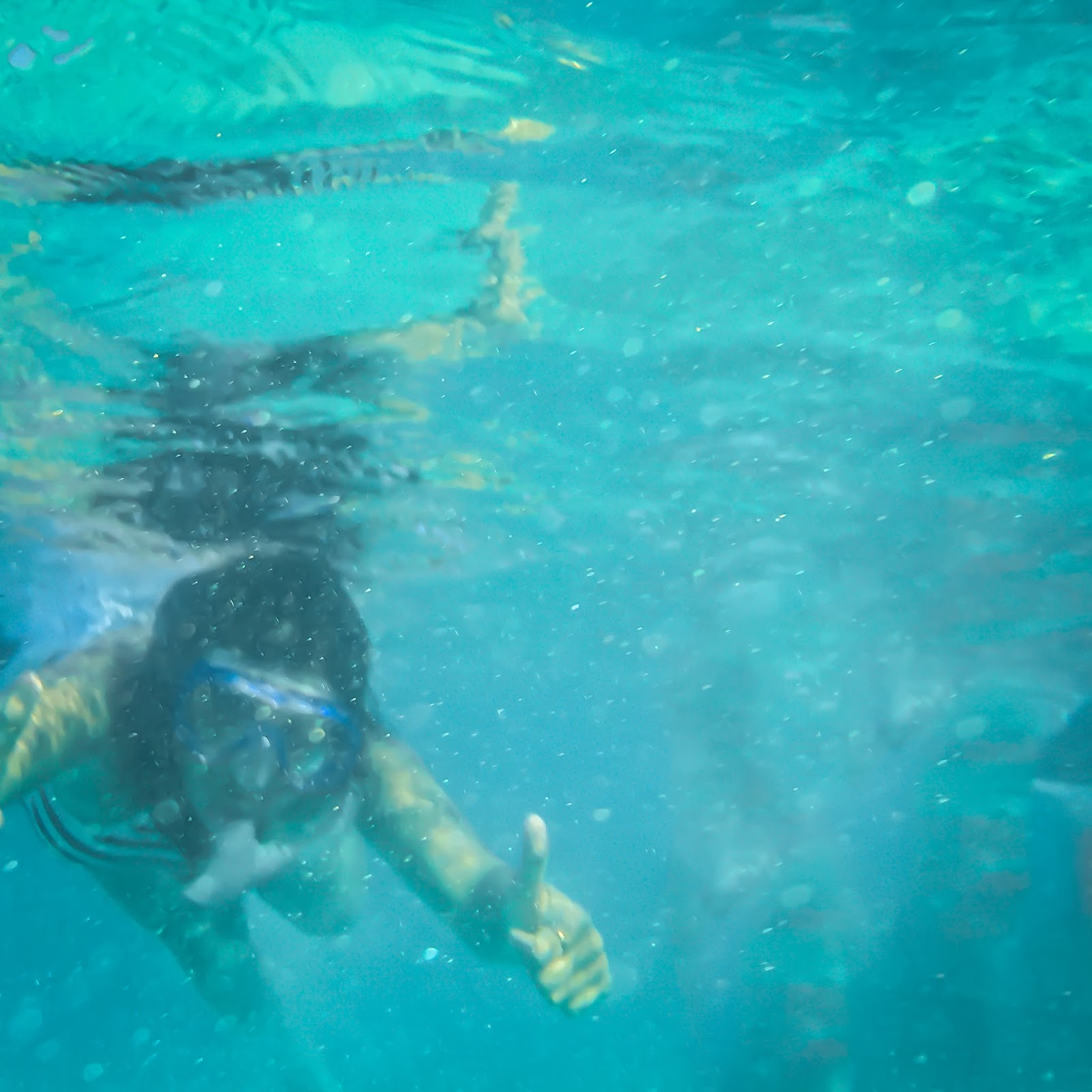 Snorkeling in Hanauma Bay