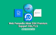 Situs Penyedia SSH Premium Support SSL/TLS