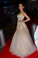 Rukshar Mir designer Anarkali Gown at 64th Jio Filmfare Awards South  2017 ~  Exclusive 003.JPG