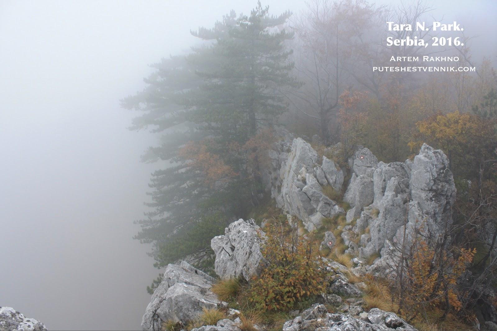 На краю обрыва в тумане
