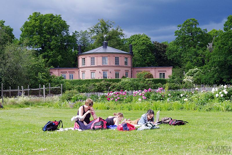 aliciasivert alicia sivert alicia sivertsson djurgården stockholm utflykt utflyktsmål friluftsmåleri rosendals trädgård slott