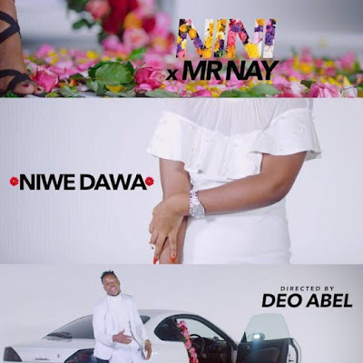 Video Nini Ft Nay Wa Mitego - Niwe Dawa