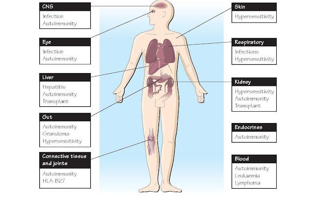 Immunity And Clinical Medicine