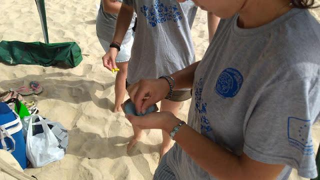Frotando tizas de colores sobre arena