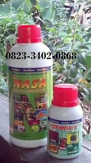 agen-nasa-di-tilatang-kamang-agam-082334020868
